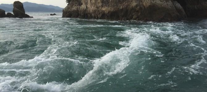 村上水軍と潮流体験船
