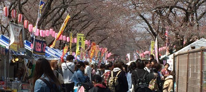 羽村の堰さくら祭!平日にも拘わらず大賑わい!!