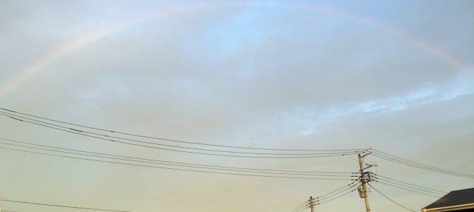久しぶりの大きな虹